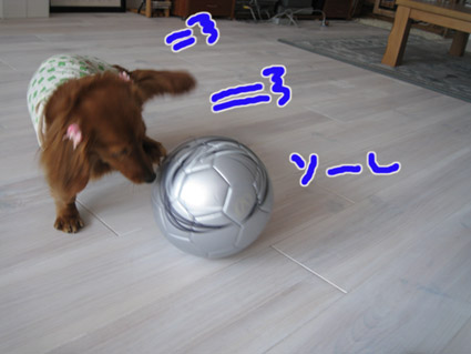 blog 09050806