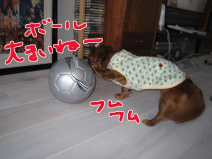 blog 09050801