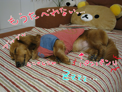 blog 09051104