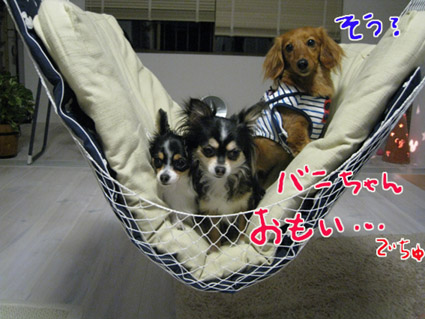 blog 09051305