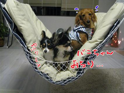 blog 09051304