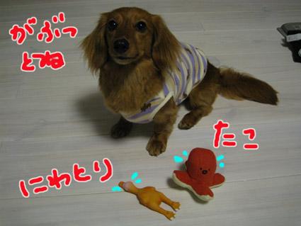 blog 09051803