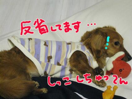 blog 09051802