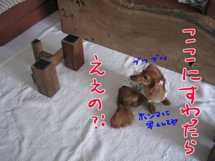 blog 09051903
