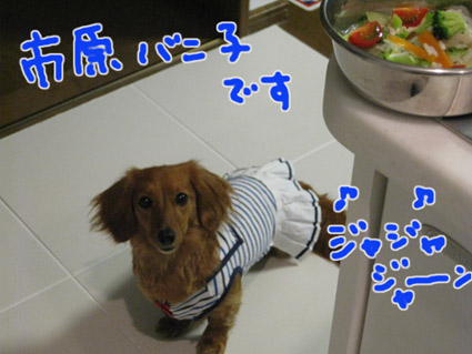 blog 09052005