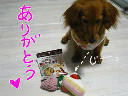 blog 09052104