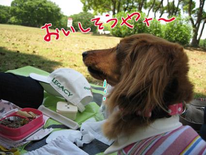 blog 09052207