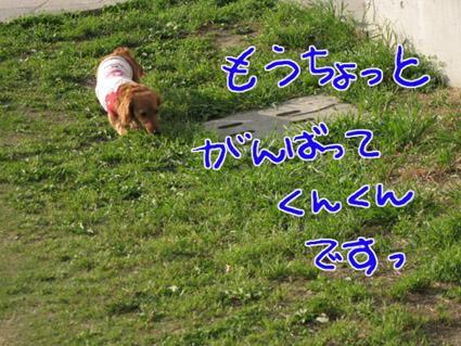blog 09052707