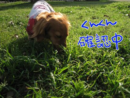 blog 09052703