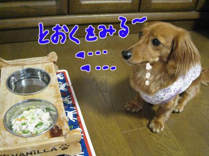 blog 09052905