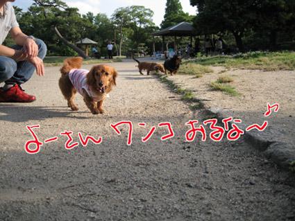 blog 09060106