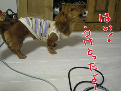 blog 09060502