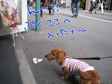 blog 09060806