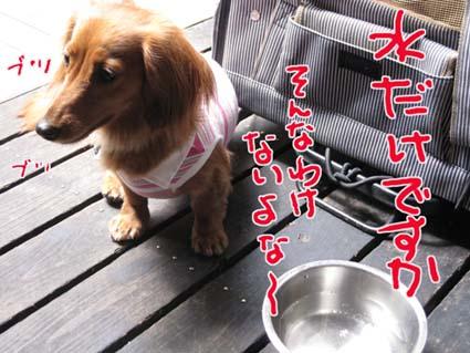 blog 09060802