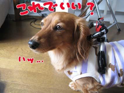blog 09061006