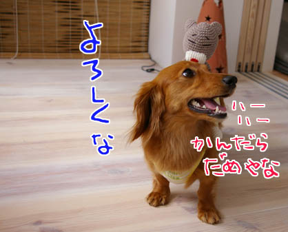 blog 09062405