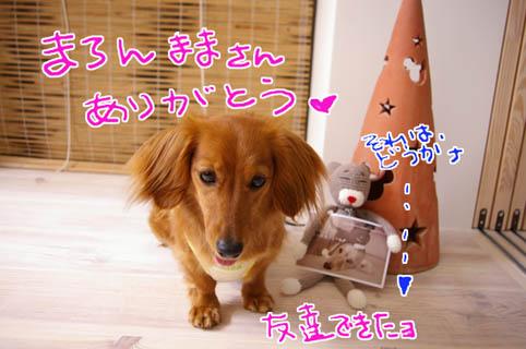blog 09062408