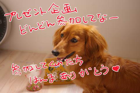 blog 09062401