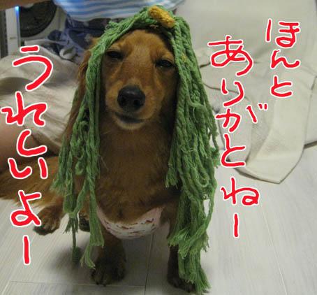 blog 09070202