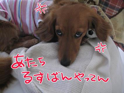 blog 09070801