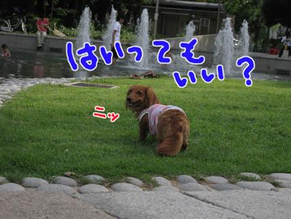blog 09070907