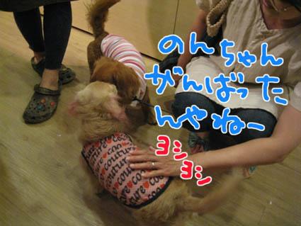 blog 09070902