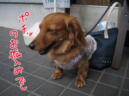 blog 09071304