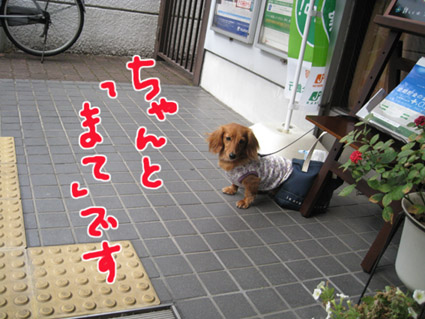 blog 09071305