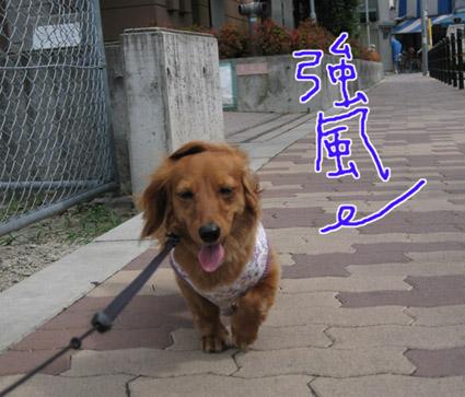 blog 09071303