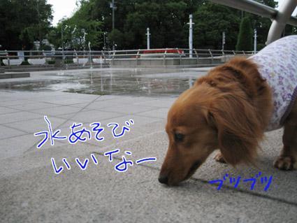 blog 09071404