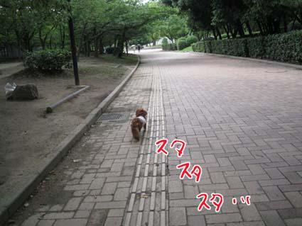 blog 09071401