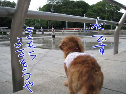 blog 09071403