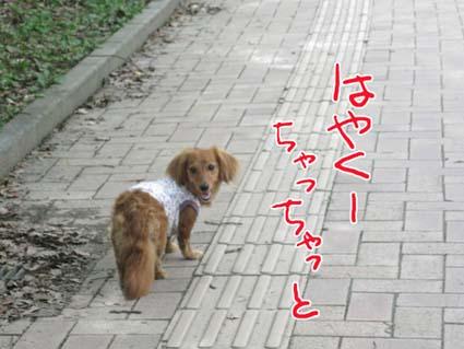 blog 09071402