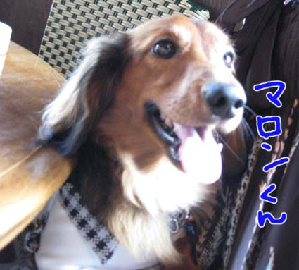blog 09071701