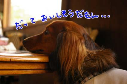 blog 09071902