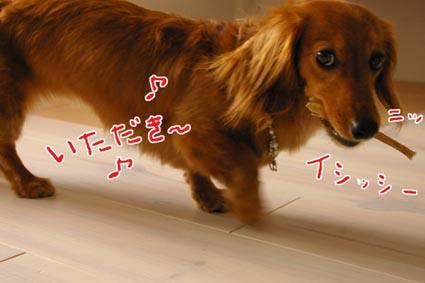 blog 09072202