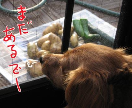 blog 09072705