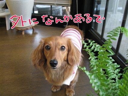 blog 09072702