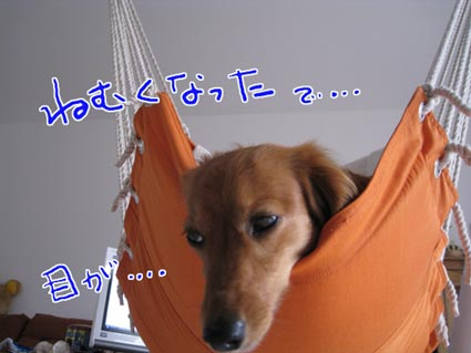 blog 09072807