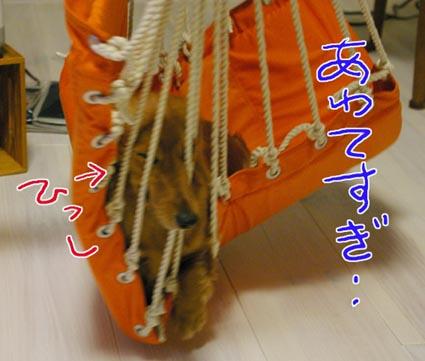 blog 09072803
