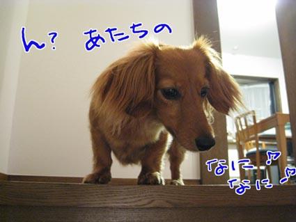 blog 09072801