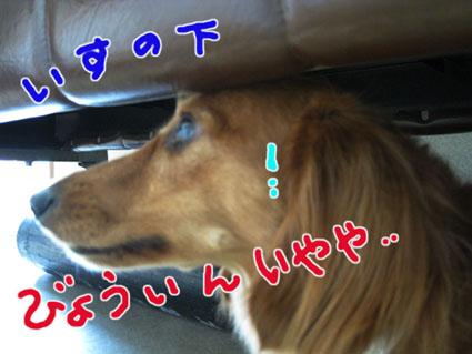 blog 09080304