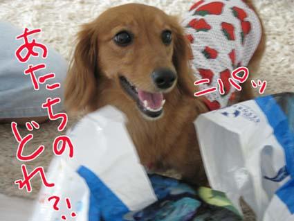 blog 09080401