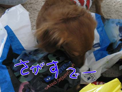 blog 09080402
