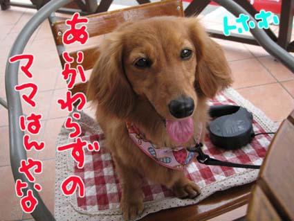 blog 09080507
