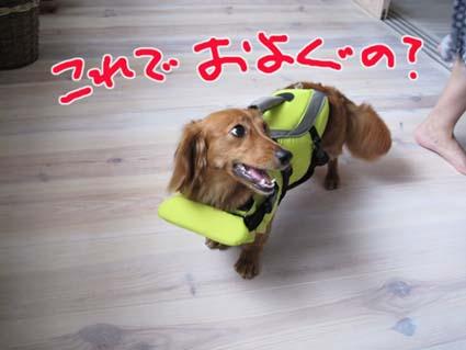 blog 09080601