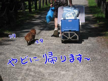 blog 09081203