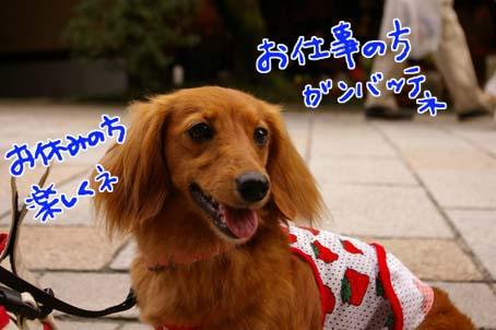 blog 09081302
