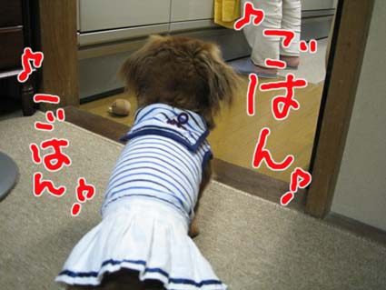 blog 09082007