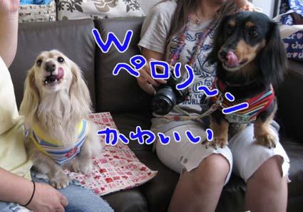 blog 09082708